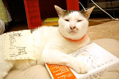 きょうの猫村さん3 3/21発売!_a0028451_235640.jpg