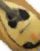 f0085167_17581746.jpg