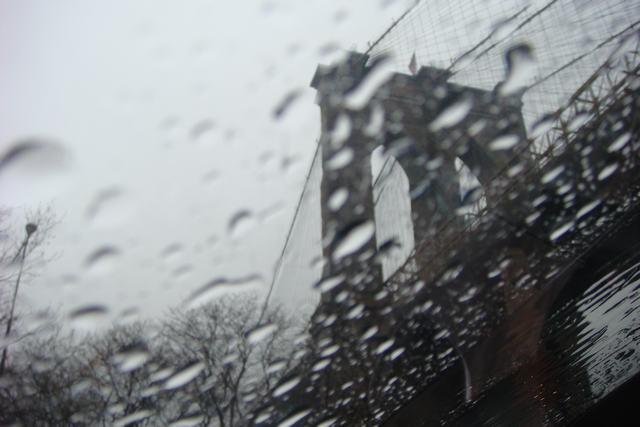 雨のブルックリン_d0100880_5363640.jpg