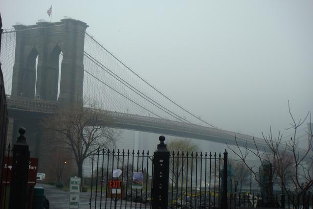雨のブルックリン_d0100880_5382089.jpg