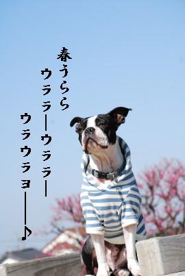 c0092787_102504.jpg