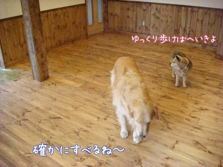 床の滑り止め再検討_f0064906_191116.jpg