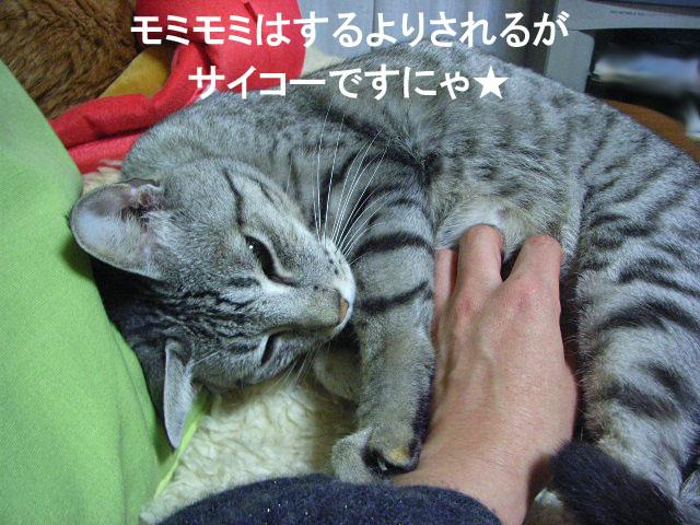 d0081025_20104861.jpg