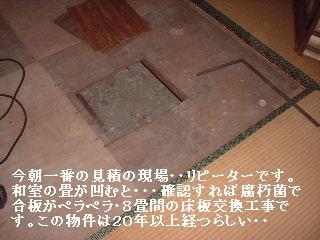 f0031037_1517814.jpg