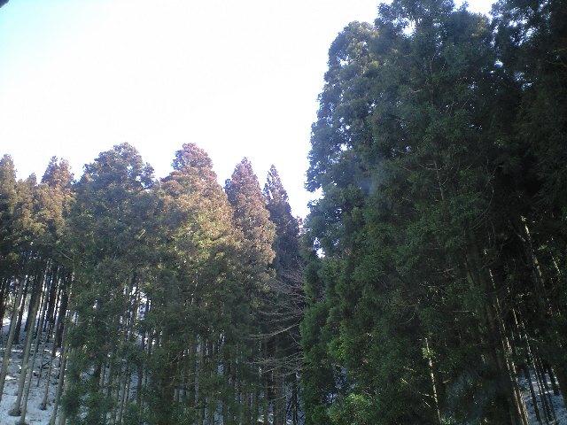 いい天気(^-^)/_c0151965_826924.jpg
