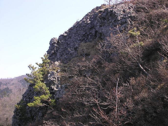 角田山ハイキング_f0050226_17335184.jpg