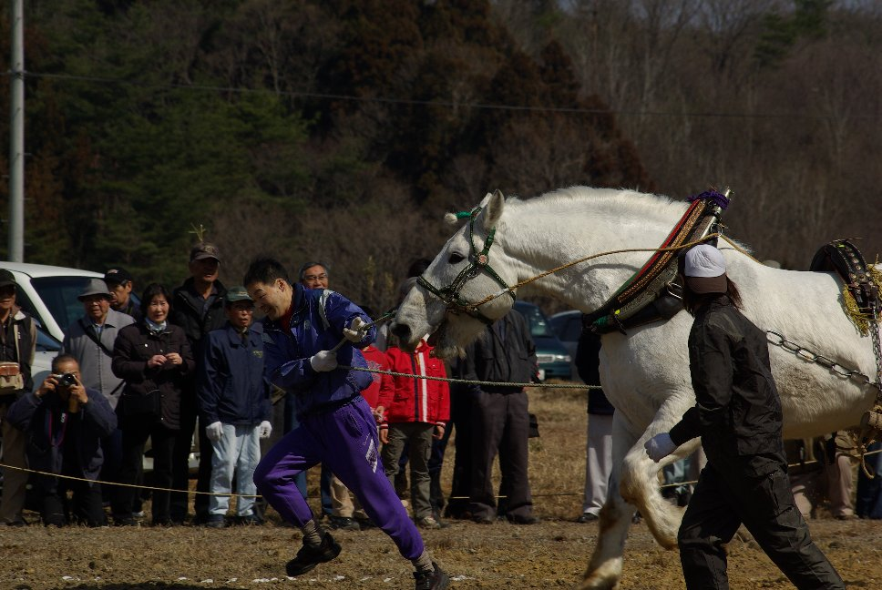 第33回東北輓馬競技栗駒大会_f0148627_17175720.jpg