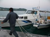 マグロにカツオ 大漁!_d0100638_10224098.jpg