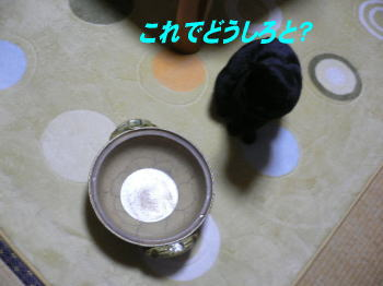 d0013645_15465267.jpg