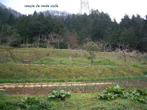b0112855_20124968.jpg