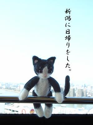 そして新潟_a0064067_1503554.jpg