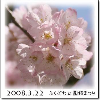 b0024183_16113475.jpg