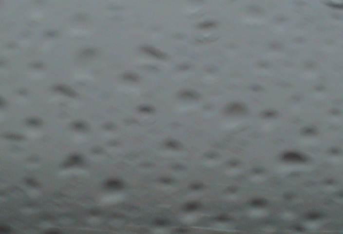 3月24日(月):寒い霧雨_e0062415_17393766.jpg