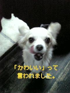 f0148927_17581414.jpg