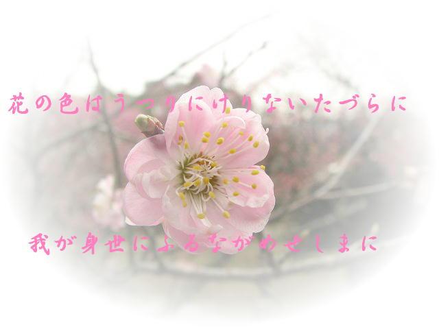 f0099535_10413378.jpg