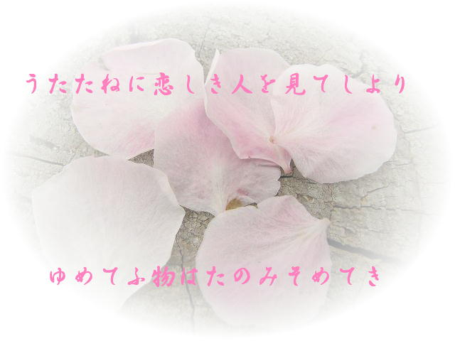 f0099535_11164021.jpg