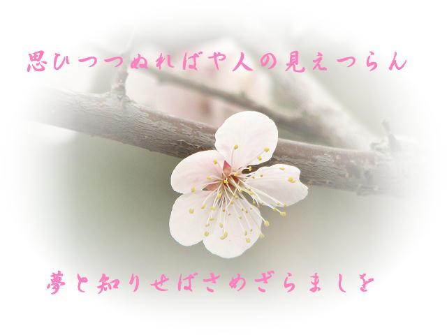 f0099535_1232450.jpg