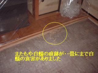 和室床工事_f0031037_1624213.jpg