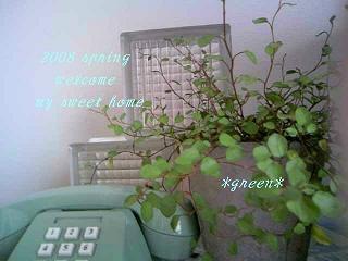 d0132155_18304992.jpg