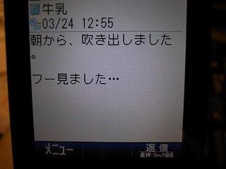 d0144860_1785686.jpg
