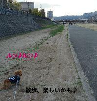 f0089568_2216103.jpg