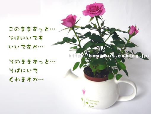 d0128697_22204094.jpg