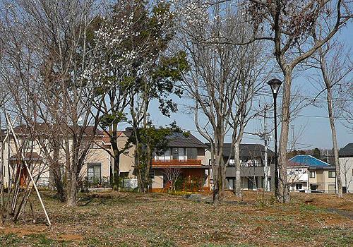 坪井町の家(2008)_b0014003_2048725.jpg