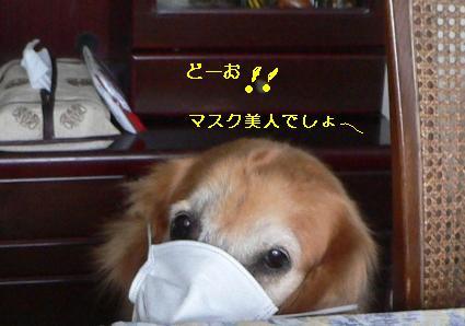 f0118135_22291987.jpg