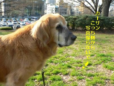 f0118135_2231314.jpg