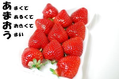e0126046_22211994.jpg
