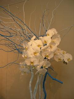 お花のデモンストレーション_e0109554_19504882.jpg