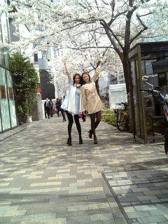 桜!_d0025559_1353578.jpg