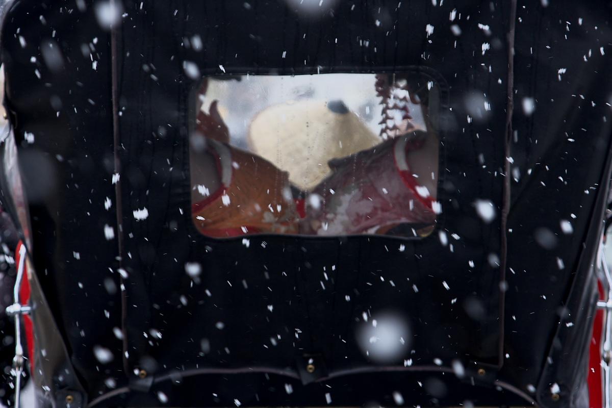 京都 雪景色 <東山2> 最終章_f0021869_1041996.jpg