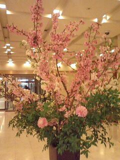 \'桜'の季節ですね! お花見カレンダーは埋まりましたか?_f0094800_18193974.jpg