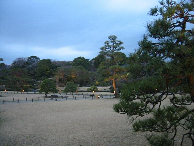 しだれ桜_a0036808_15351011.jpg