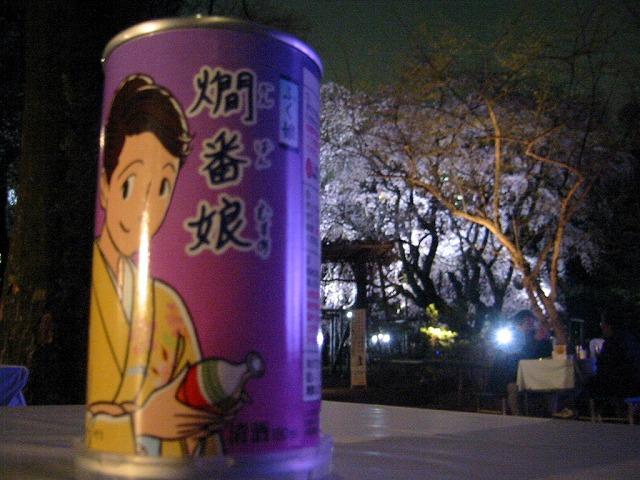 しだれ桜_a0036808_1536537.jpg