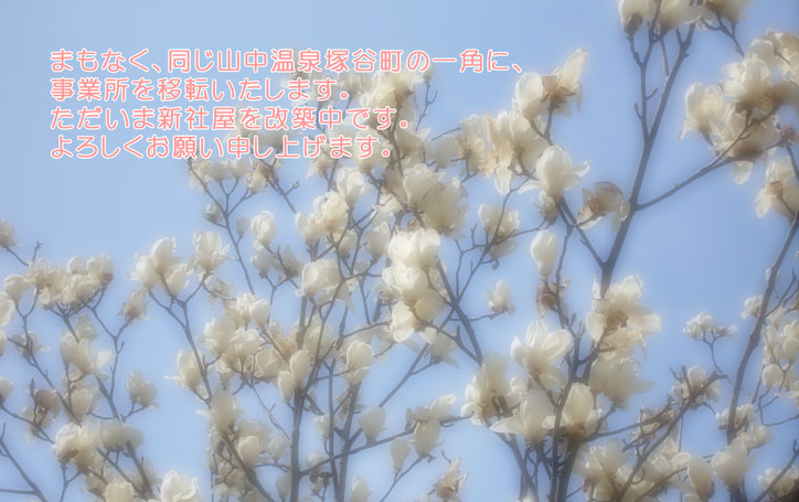 d0014310_992460.jpg