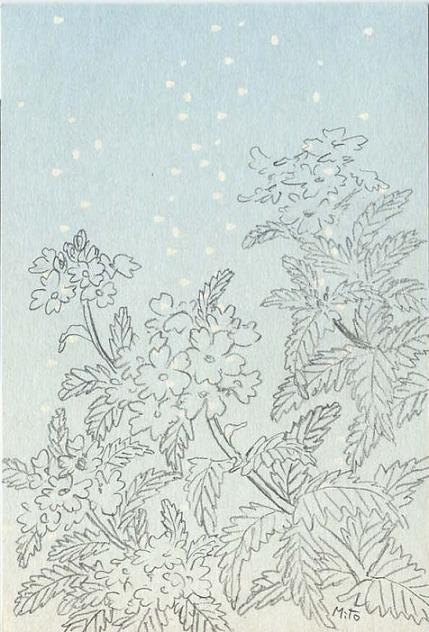 バーベナ~水彩画~_b0089338_1262334.jpg