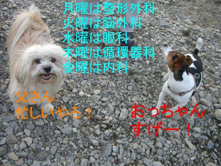 f0053952_20253236.jpg