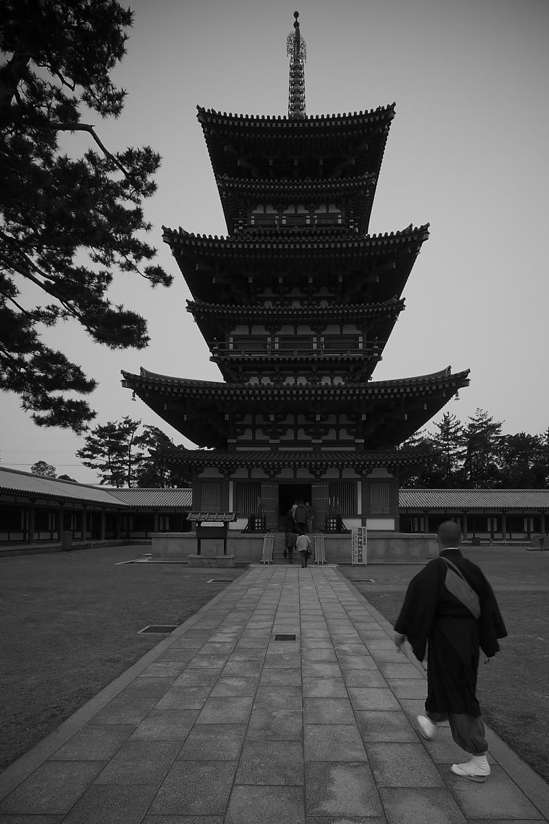 奈良 オフ会 <3/2> 薬師寺編_f0021869_12543382.jpg