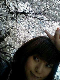 やっとこさ春♪_c0038100_13181028.jpg