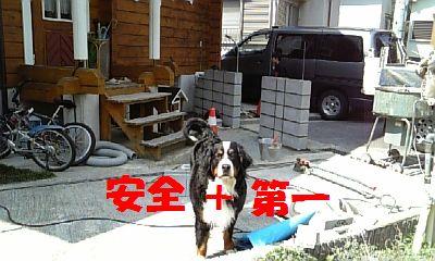 b0090201_1420342.jpg