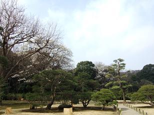 春の六義園ツアー_f0085219_18573528.jpg