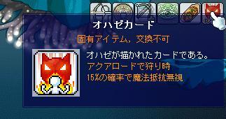 f0053927_729416.jpg