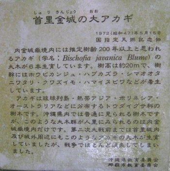 b0093050_14181040.jpg