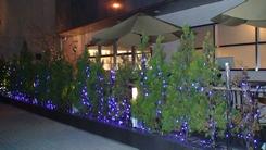 イタリアンキッチン・H-acca【アッカ】でパーティー  2008年3月29日_d0083265_23561915.jpg
