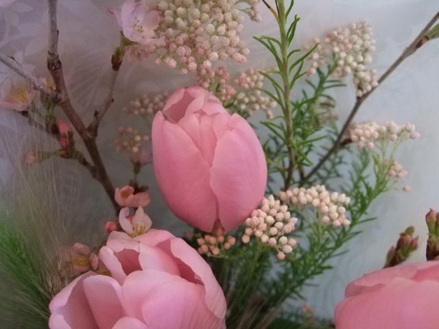 オークリーフ(桜の花束)_f0049672_17274689.jpg