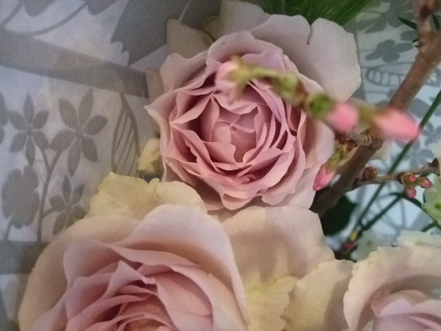 オークリーフ(桜の花束)_f0049672_172829.jpg