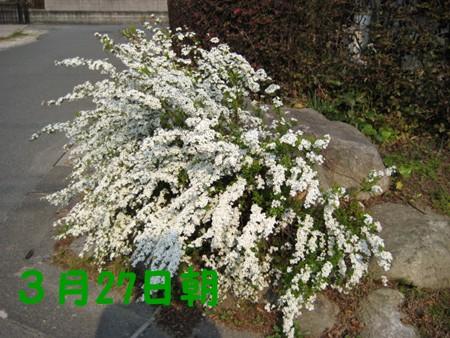 f0003174_14221344.jpg