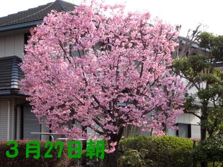 f0003174_14225442.jpg